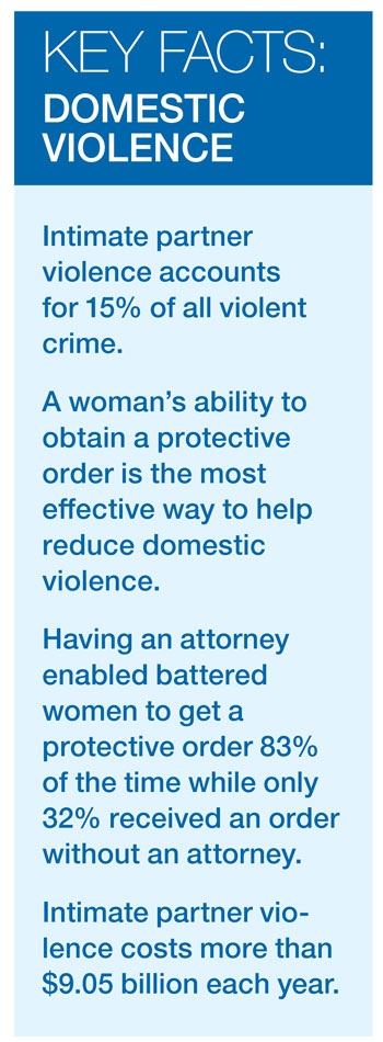 Key Facts -Domestic Violence